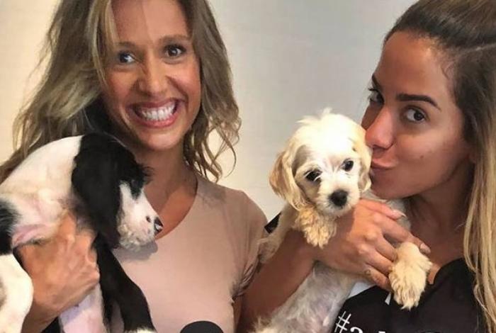 Anitta se aproximou de Luisa Mell por interesse, diz Leo Dias